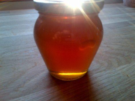 Erdei méz (mézharmat méz) 250g